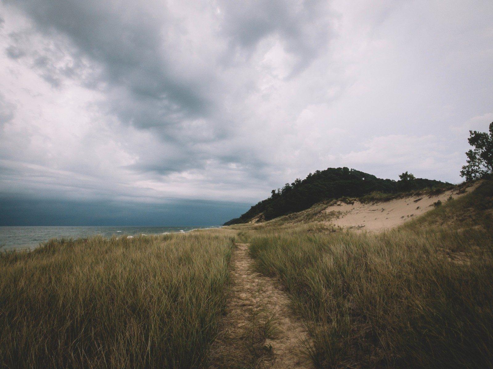 pathway between green grass